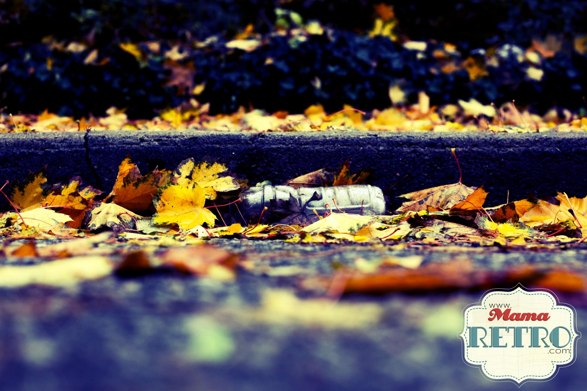 Reducir residuos Imagen de Jasmin Sessler en Pixabay
