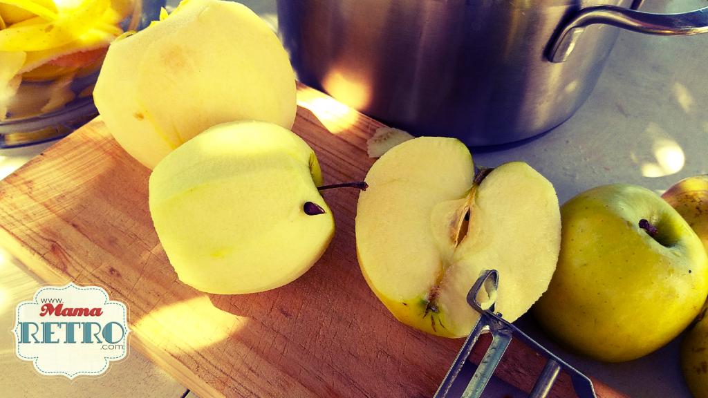 Vinagre de manzana casero hecho de pelas y corazones
