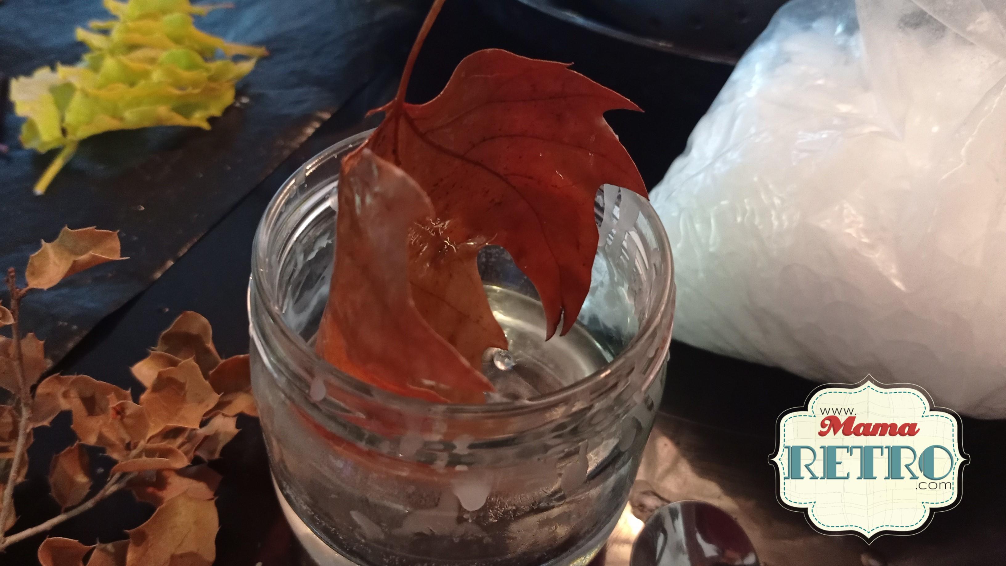 Al encerar las hojas preservamos su color y evitamos que se desmoronen