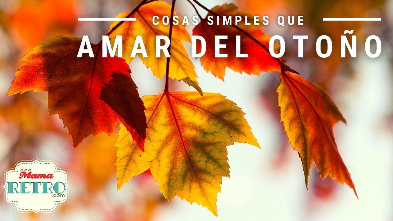 Cosas simples que amar del otoño
